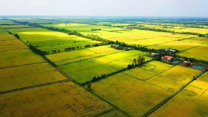 Quy định về đơn giá đền bù đất nông nghiệp mới nhất
